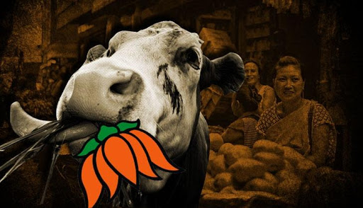 Will the BJP beef politics hurt the party in the north east 63543 730x419 m